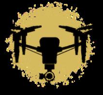 drone golden paint